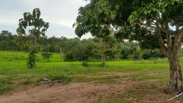 Fazenda em Rosário Oeste-MT 457 hectares boa de argila - Foto 4