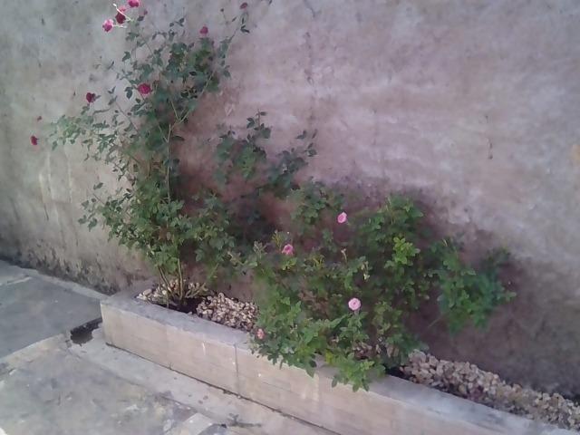 Troco em Carro ou Vendo Casa Seminova em Altos (PI) - Foto 11