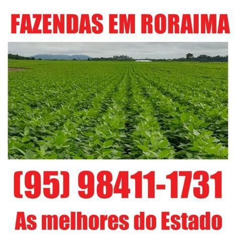 Fazenda com 12000 hectares em boa vista, ler descrição do anuncio
