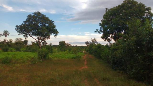 Fazenda 320 ha 100 km de Cuiaba - Foto 9