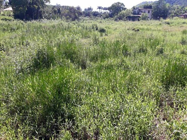 Belíssimo terreno em Guapimirim - Parada Ideal R$ 13 mil oportunidade!!! - Foto 7