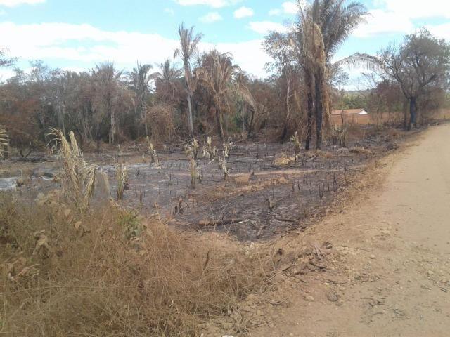 Lotes de terreno em Nazária/PI - Foto 16