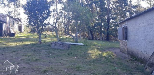 Chácara à venda com 3 dormitórios em Zona rural, Pinheiro machado cod:10115 - Foto 5