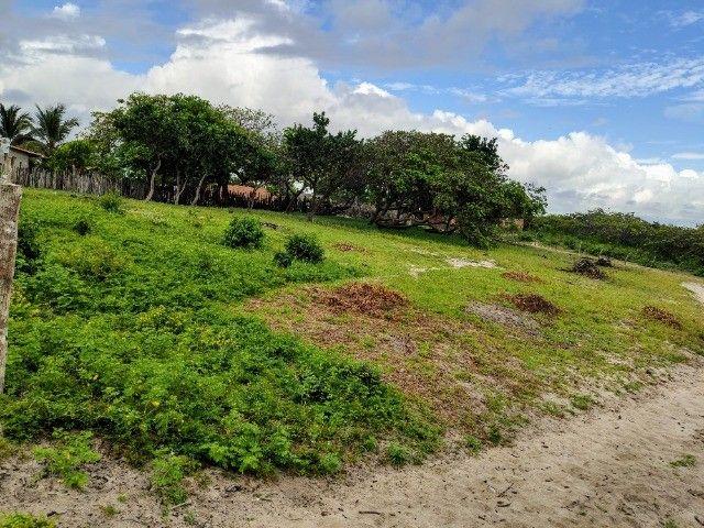 Lençóis Maranhenses - Lotes em Condomínio em Santo Amaro-MA - Foto 2