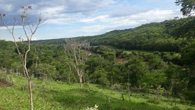 Fazenda dupla aptidão município Ituitataba  - Foto 9