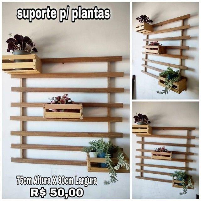 Diversos para plantas e decoração