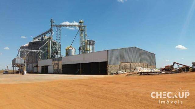 Fazenda à venda, 11.829 ha por R$ 500.000.000 - Zona Rural - Jussara/GO - Foto 14