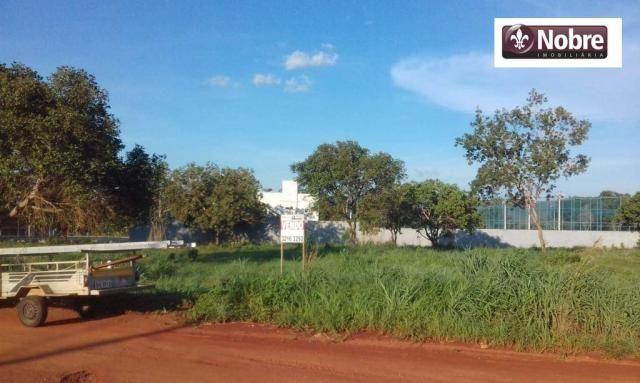 Terreno à venda, 2067 m² por r$ 399.000 - plano diretor norte - palmas/to - Foto 3