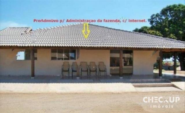 Fazenda à venda, 11.829 ha por R$ 500.000.000 - Zona Rural - Jussara/GO - Foto 10