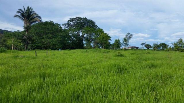 Fazenda em Rosário Oeste-MT 457 hectares boa de argila - Foto 2