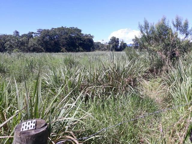 Belíssimo terreno em Guapimirim - Parada Ideal R$ 13 mil oportunidade!!! - Foto 11