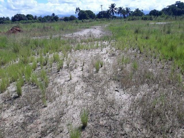 Belíssimo terreno em Guapimirim - Parada Ideal R$ 13 mil oportunidade!!! - Foto 13