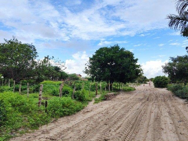 Lençóis Maranhenses - Lotes em Condomínio em Santo Amaro-MA - Foto 7