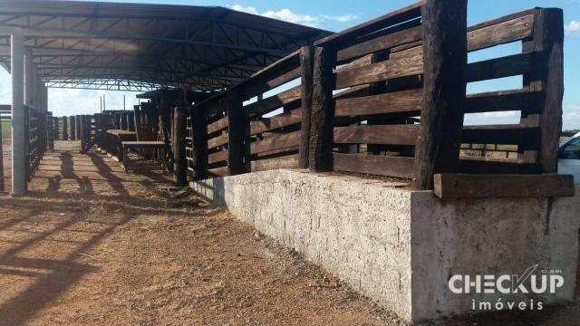Fazenda à venda, 11.829 ha por R$ 500.000.000 - Zona Rural - Jussara/GO - Foto 19