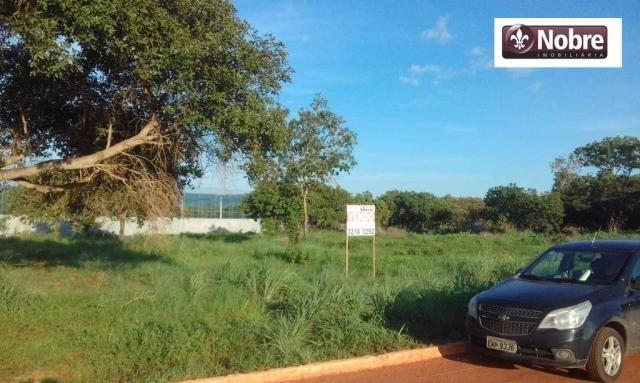 Terreno à venda, 2067 m² por r$ 399.000 - plano diretor norte - palmas/to - Foto 4