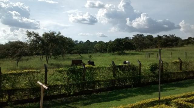 Fazenda de 4 alqueires para pecuária a venda na região de Caldas Novas GO - Foto 7