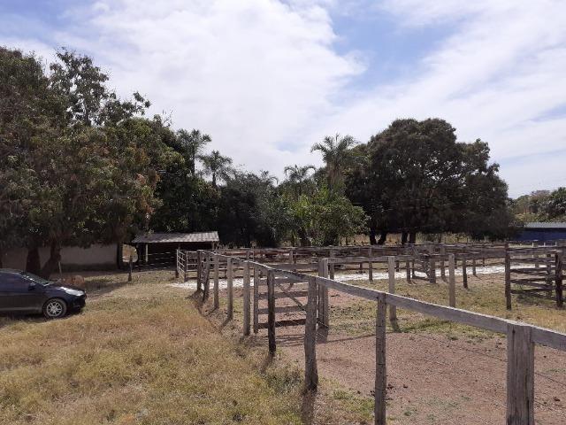 Fazenda 23 Alqueires, Formada, Plana, Terra Cultura, 1,2 Asfalto-Goiánésia - Foto 14