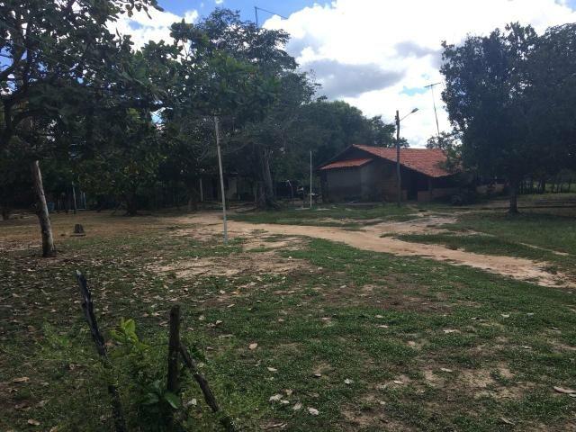 Sítio em Altos/PI, documentação ok - Foto 5