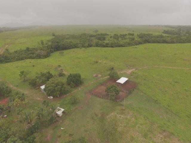 Fazenda no manso/ 700 hectares muito boa de água - Foto 3