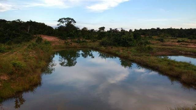 Fazenda 320 ha 100 km de Cuiaba - Foto 4