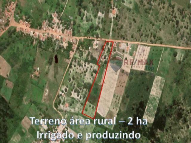 Sítio com 2 hectares - Todo irrigado e produzindo - Foto 2