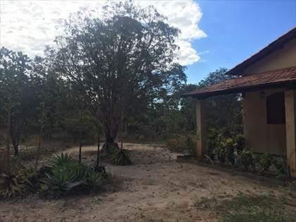 Fazenda à venda, Córrego da Minhoca - Três Marias/MG - Foto 15
