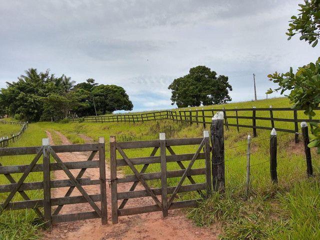 Fazenda a venda em Candeias. A 50km de Salvador - Foto 10