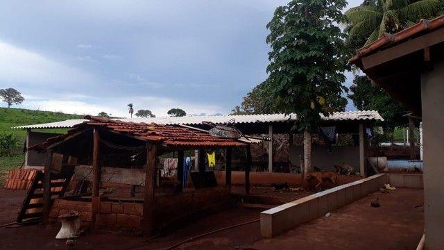 Fazenda dupla aptidão município Ituitataba  - Foto 11