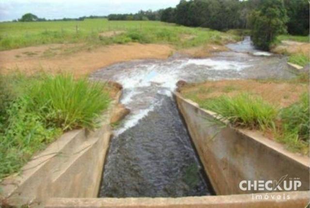 Fazenda à venda, 11.829 ha por R$ 500.000.000 - Zona Rural - Jussara/GO - Foto 8