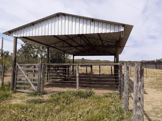 Fazenda 23 Alqueires, Formada, Plana, Terra Cultura, 1,2 Asfalto-Goiánésia - Foto 12