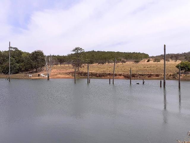 Fazenda 23 Alqueires, Formada, Plana, Terra Cultura, 1,2 Asfalto-Goiánésia - Foto 3