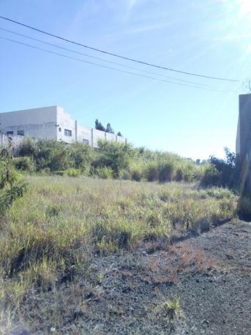 Terreno para alugar em Vila sao miguel, Apucarana cod:00097.008