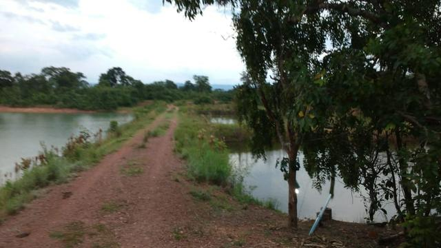 Fazenda 320 ha 100 km de Cuiaba - Foto 14