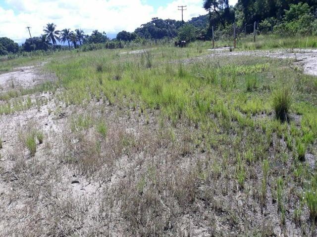 Belíssimo terreno em Guapimirim - Parada Ideal R$ 13 mil oportunidade!!! - Foto 10