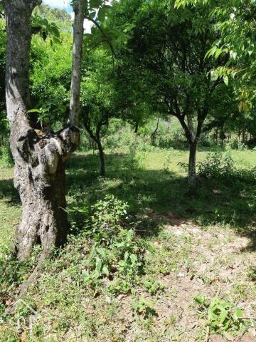 Chácara à venda com 2 dormitórios em Zona rural, Santa maria cod:10080 - Foto 8
