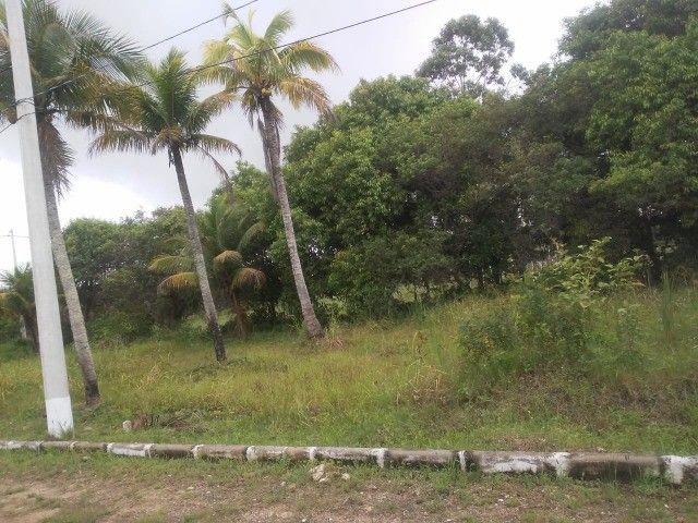 c03. Terrenos financiados com sinal parcelado em Unamar/C Frio. - Foto 2