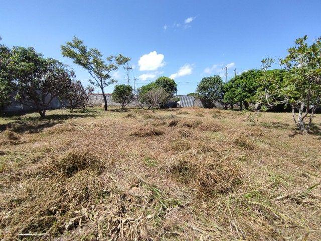 Terreno para sítio dentro da cidade - Registrado - Foto 4