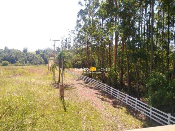 Sítio para alugar, 6500 m² por R$ 1.180,00/mês - Zona Rural - Colinas/RS - Foto 7