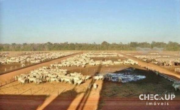 Fazenda à venda, 11.829 ha por R$ 500.000.000 - Zona Rural - Jussara/GO - Foto 7