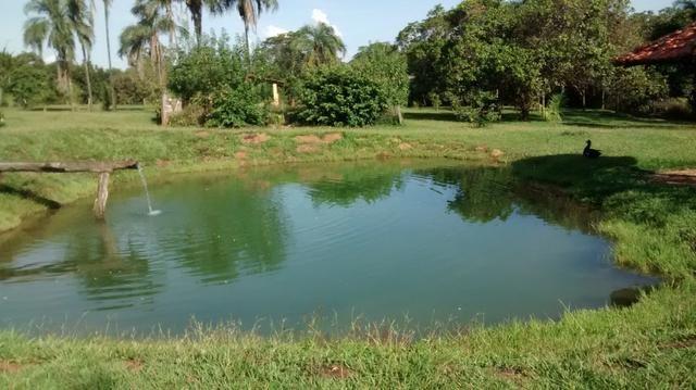 Fazenda de 4 alqueires para pecuária a venda na região de Caldas Novas GO - Foto 11