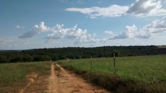 Fazenda de 4 alqueires para pecuária a venda na região de Caldas Novas GO - Foto 3