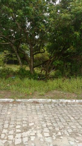 Terreno em Arembepe - Foto 4
