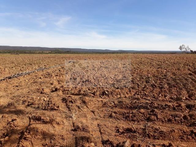 Fazenda no Mato Grosso 5.276 ha venda total - parcial ou permuta - Foto 8