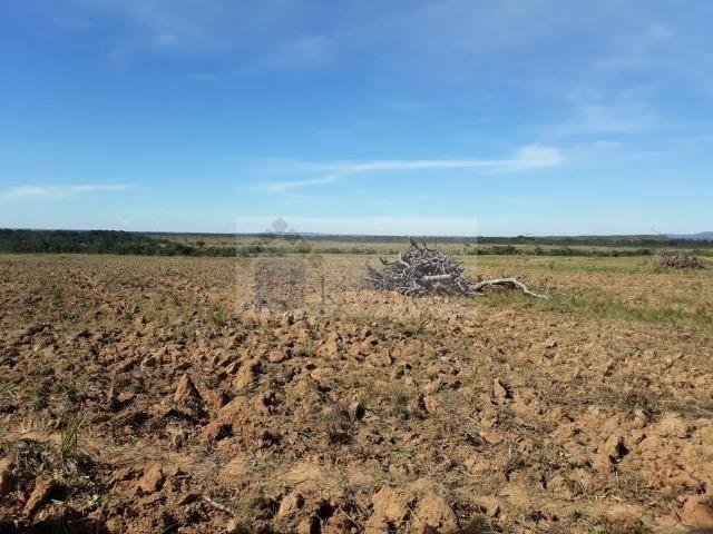Fazenda no Mato Grosso 5.276 ha venda total - parcial ou permuta - Foto 5