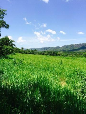 Fazenda em Rosário Oeste-MT 457 hectares boa de argila - Foto 3