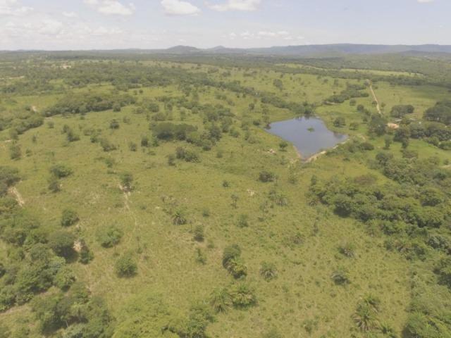 Fazenda em Acorizal MT/ 162 hectares sendo 150 formado - Foto 7