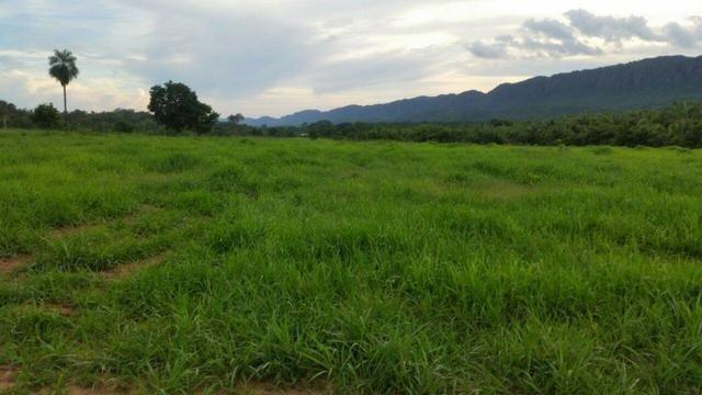 Fazenda em Rosário Oeste-MT 457 hectares boa de argila - Foto 8