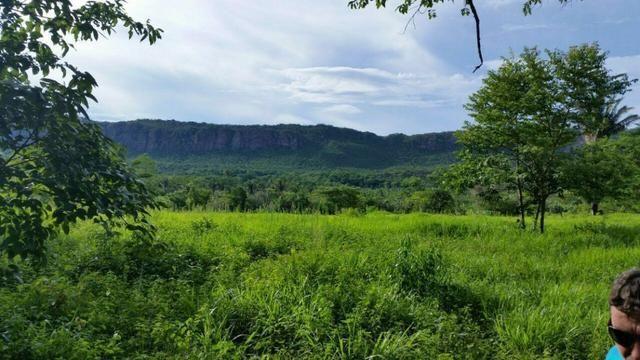 Fazenda em Rosário Oeste-MT 457 hectares boa de argila - Foto 11