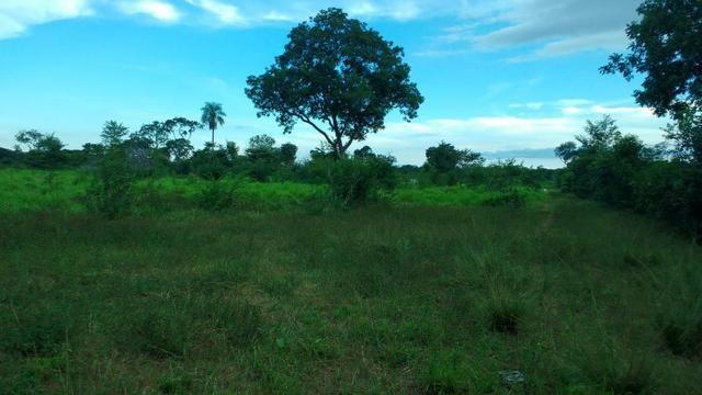 Fazenda 320 ha 100 km de Cuiaba - Foto 10