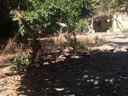 Fazenda à venda, Córrego da Minhoca - Três Marias/MG - Foto 16
